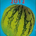 Sant Magí 2012: 150 actes per a tots els gustos