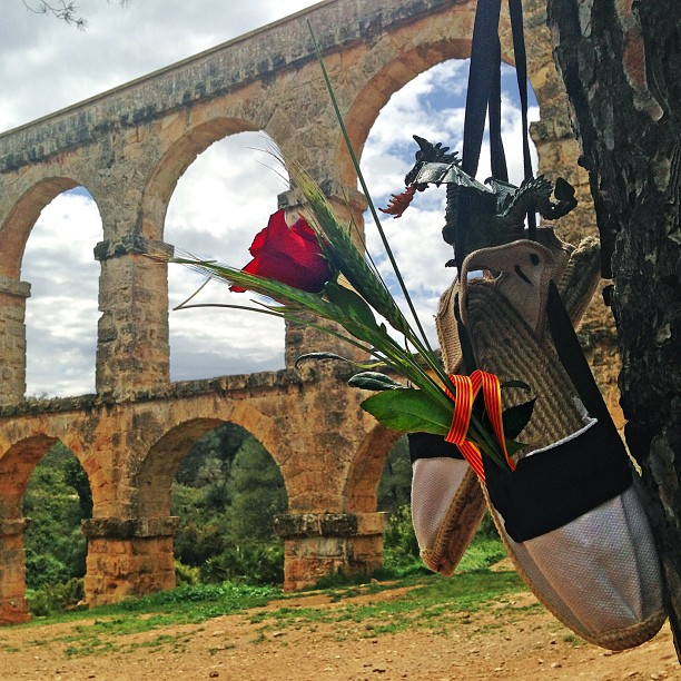 Sant Jordi experience. Foto Juanjo Fuster