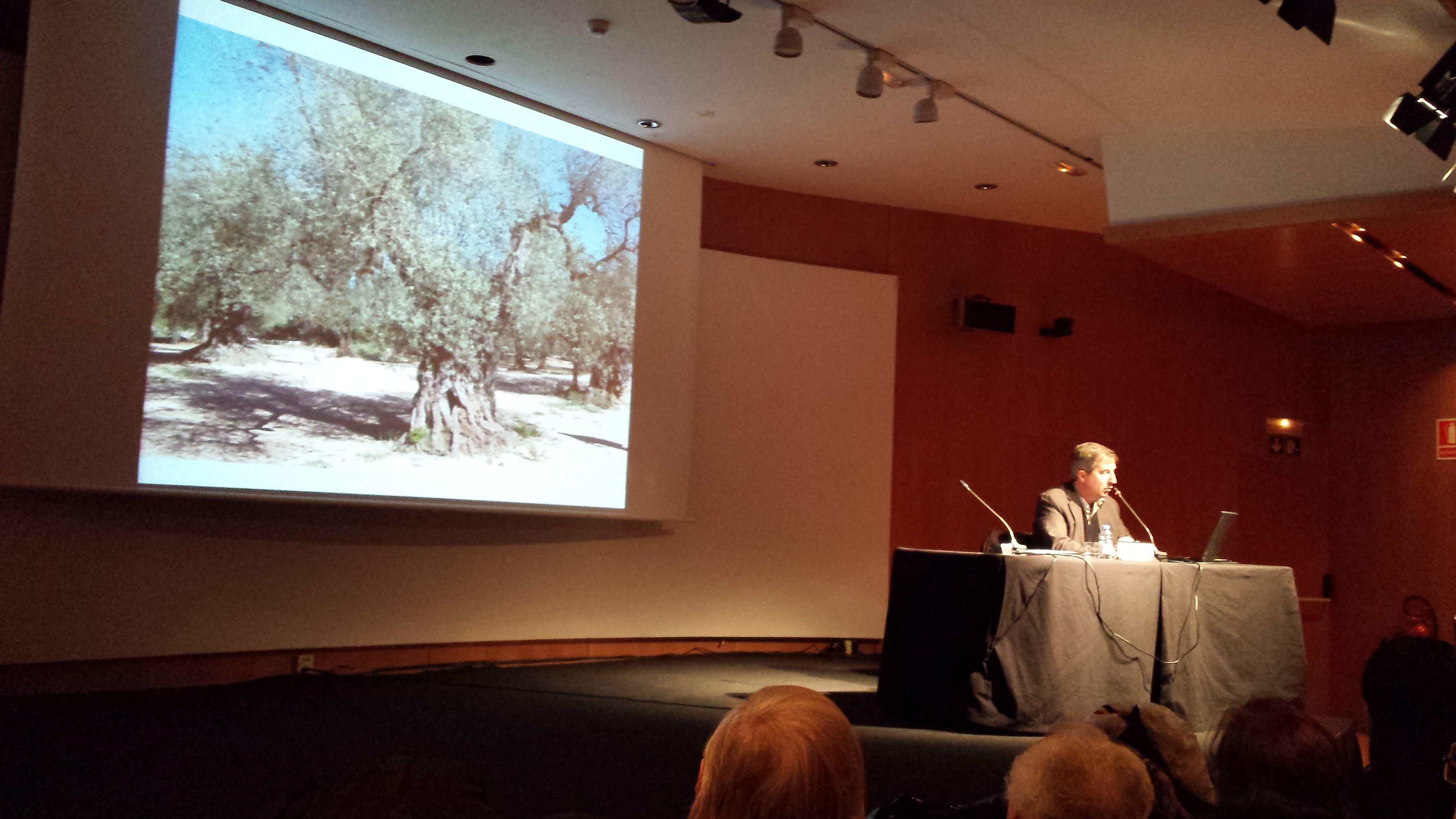 El professor Ruiz de Arbulo al CaixaForum Tarragona