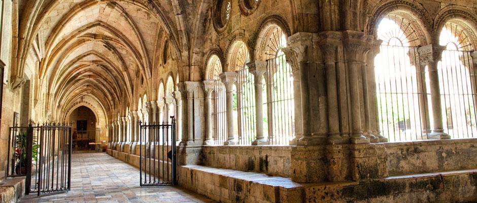 Claustre de la Catedral. Foto: Cinta S. Bellmunt